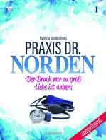 Praxis Dr. Norden Doppelband 1 – Arztroman