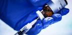 Vaccine Shows Promise Against Klebsiella Superbug