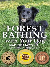 Forest Bathing with Your Dog