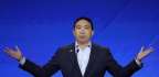 Andrew Yang Tries To Break Through Democratic Debate By Pledging $1,000 Per Month To 10 Families