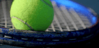 Which Tennis Ball Is Perfect For You?