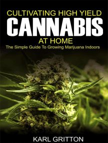 Cultivating High Yield Cannabis at Home