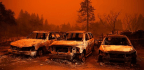 How Reporters From Across The U.S. Cover The Climate 'Emergency'