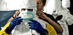 Adding A Mutation To Ebola Could Sap Its Infectious Power