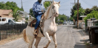 Black America Saddles Up To Own Its Cowboy Heritage