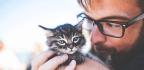 Despite Appearances, Your Cat Does Love You