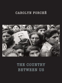 The Country Between Us