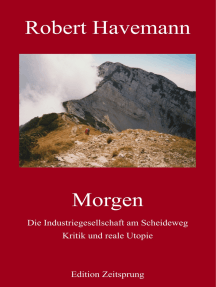 Morgen: Die Industriegesellschaft am Scheideweg. Kritik und reale Utopie