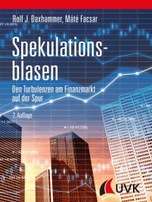 Spekulationsblasen: Den Turbulenzen am Finanzmarkt auf der Spur