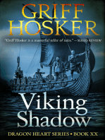Viking Shadow