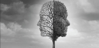 Aprender A Sentir Cómo Las Sensaciones Influyen En El Cerebro