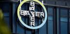 Bayer Using AI To Improve Disease Diagnosis, Drug Design