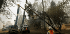 PG&E Cuts Power Across Northern California As Winds Bring Critical Fire Danger