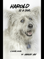 Harold Is a Dog.