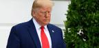 N.Y. Judge Blocks Trump Administration's Public Charge Rule
