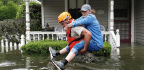 Among Hurricane Harvey's Many Bad Effects
