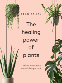 The Healing Power of Plants: The Hero Houseplants That Will Love You Back