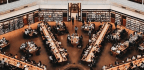 Libraries Are Even More Important to Contemporary Community Than We Thought