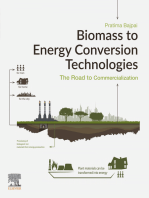 Biomass to Energy Conversion Technologies: The Road to Commercialization