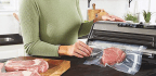 Vacuum Sealers Perfect For Food Storage And Sous-vide Cooking