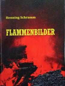 Flammenbilder: Kriminalroman