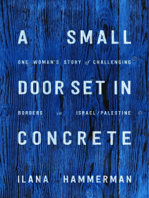 A Small Door Set in Concrete: One Woman's Story of Challenging Borders in Israel/Palestine