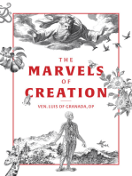 The Marvels of Creation