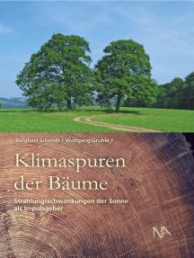 Klimaspuren der Bäume: Strahlungsschwankungen der Sonne als Impulsgeber