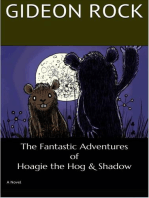 The Fantastic Adventures of Hoagie the Hog and Shadow