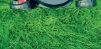Mower Maintenance — Tips And Tricks
