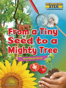 From a Tiny Seed to a Mighty Tree: How Plants Grow