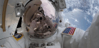 An Alarming Discovery in an Astronaut's Bloodstream