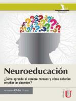 Neuroeducación: ¿Cómo aprende el cerebro humano y cómo deberían enseñar los docentes?