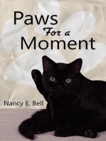 Paws for a Moment