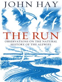 The Run: Observations on the Natural History of the Alewife