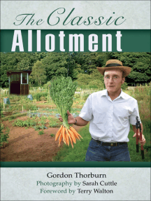 The Classic Allotment