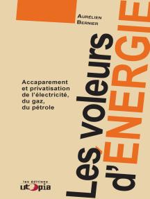 Les voleurs d'énergie: Accaparement et privatisation de l'éléctricité, du gaz, du pétrole