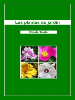 Les plantes du jardin