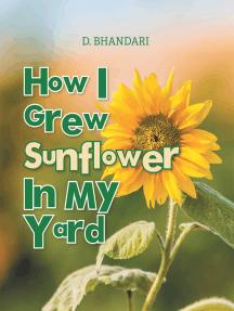 How I Grew Sunflower In My Yard