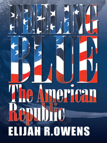 Feeling Blue: The American Republic