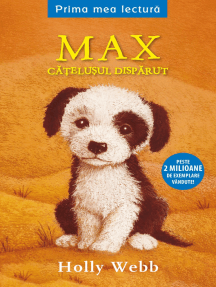 Max, Catelusul Disparut