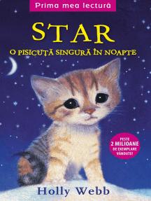 Star: o pisicuță singură în noapte