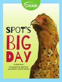Spot's Big Day