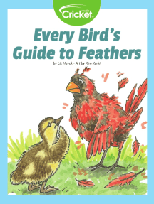 Every Bird's Guide to Feathers