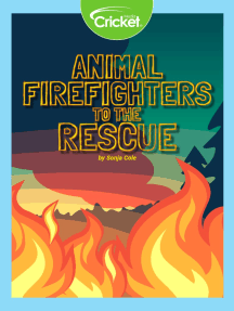 Animal Firefighters to the Rescue