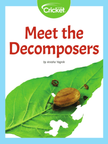 Meet the Decomposers