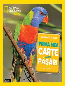 Prima Mea Carte Despre Păsări