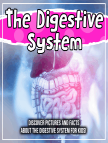 The Digestive System: Discover Pictures and Facts About The Digestive System For Kids!