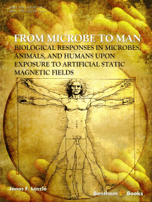 From Microbe to Man: Biological responses in microbes, animals and humans upon exposure to artificial static magnetic fields