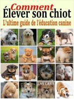Comment élever son chiot : l'ultime guide de l'éducation canine